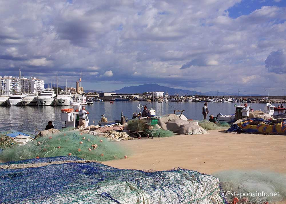 Fishermen at the port in  Estepona
